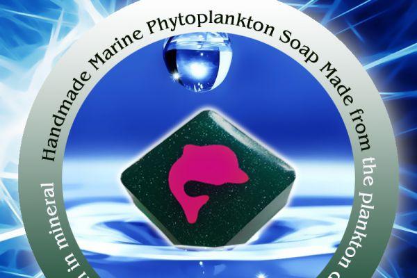 soap-eng20CAA01C4-BB5E-E167-6C31-97D1887CA2E9.jpg